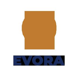 Evora – Real Estate Single Agency Portal